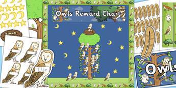 Owls Reward Display Pack - owls, reward, display pack, display, pack