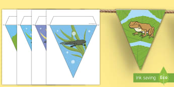 Lebenszyklus des Frosches Wimpel Poster für die Klassenraumgestaltung - Frühling, Frosch, Lebenszyklus, Kaulquappe, Froschlaich, spring, frog, frogspawn, tadpole,German