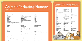 Year 1-6 Animals Including Human Scientific Vocab Progress Poster