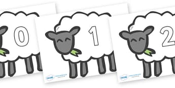 Numbers 0-31 on Sheep - 0-31, foundation stage numeracy, Number recognition, Number flashcards, counting, number frieze, Display numbers, number posters