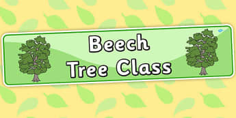 Beech Tree Themed Classroom Display Banner - plants, tree, header