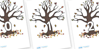 Numbers 0-100 on Autumn Trees - 0-100, foundation stage numeracy, Number recognition, Number flashcards, counting, number frieze, Display numbers, number posters