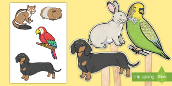Pet Animal Stick Puppets - Pets, cat, dogs, rabbits, budgie, guinea pig, hamster, snake, puppets