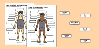 Body Parts Labelling Activity Polish Translation - polish, body parts, labelling, activity, body