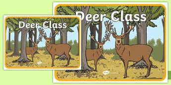 Deer Class Display Poster - deer class, display poster, display, poster, deer, class