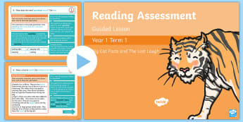 Year 1 Reading Assessment Term 1 Paper 1 Guided Lesson PowerPoint - comprehension, SATs, read, test,Y1,