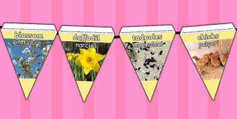 Spring Display Photo Bunting Romanian Translation - seasons