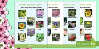 Caccia ai Fiori e le Piante Attività - caccaia, al, tesoro, painte, e fiori, gioco, attività, primavera, fioritura, giardino, cortile, mer