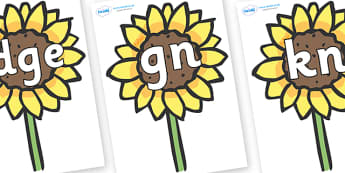 Silent Letters on Sunflowers - Silent Letters, silent letter, letter blend, consonant, consonants, digraph, trigraph, A-Z letters, literacy, alphabet, letters, alternative sounds