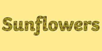 Sunflowers Display Lettering - sunflowers, display lettering, display, letter, letters, lettering