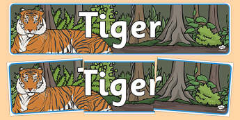 Tiger Display Banner - tigers, display, banner, jungle, animals, wild, wildlife, banner, sign, rare, endangered