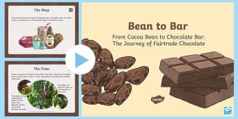 KS2 World Fair Trade Day Chocolate Information PowerPoint - World Fairtrade Day, chocolate, cooperative, Ghana, cocoa, cocoa bean, cocoa pod, fair, set price, s