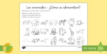 Ficha de actividad: ¿Cómo se alimentan? - Los animales - alimentación, animales, grupos, carnívoros, herbívoros, omnívoros, cómo se alimentan,Spanish