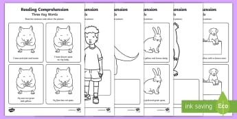 Three Key Word Reading Comprehension Activity Sheets - Worksheets, reading comprehension, three key words, ICW, DLS, listening, attention and listening