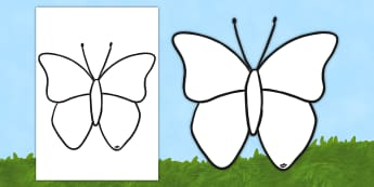 Butterfly Outline Colouring Sheet - butterfly, outline display, activity, display