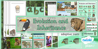 PlanIt - Science Year 6 - Evolution and Inheritance Additional Resources - planit, science, evolution, inheritance