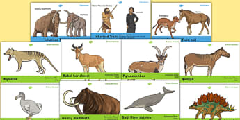 Extinction and Inheritance Display Poster Pack - extinction, inheritance, display, poster, pack