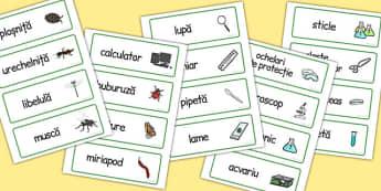 Mici Vietuitoare, joc de rol, cartonase cu imagini si cuvinte, Romanian