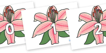 Numbers 0-50 on Lilies - 0-50, foundation stage numeracy, Number recognition, Number flashcards, counting, number frieze, Display numbers, number posters