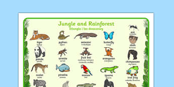 Jungle and Rainforest Word Mat Polish Translation - polish, Jungle, Rainforest, word mat, writing aid, vines, A4, display, snake, forest, ecosystem, rain, humid, parrot, monkey, gorilla