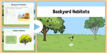 Backyard Habitat PowerPoint - australia, Science, Year 1, Habitats, Australian Curriculum, Backyard, Living, Living Adventure, Good to Grow, Ready Set Grow, Life on Earth, Environment, Living Things, Animals, Plants, Photos, Photographs, PowerPoint