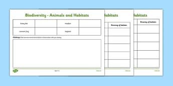 Biodiversity Habitat and Animal Matching and Drawing Activity Sheet - matching, activity sheet, animals, habitat, species, green schools, biodiversity, worksheet