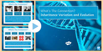 Inheritance, Variation and Evolution What's the Connection? PowerPoint - KS4 What's the Connection?, Inheritance, Variation, Reproduction, Extinction, Recessive, Dominant,