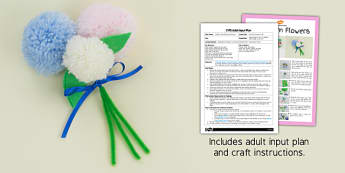 Pom Pom Flowers Craft EYFS Adult Input Plan And Resource Pack - craft