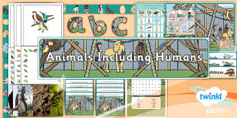 PlanIt - Science Y2 - Animals Including Humans Additional Resources - Animals including humans, biology, life processes