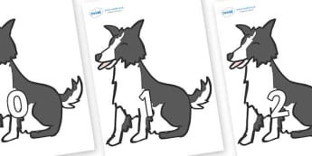 Numbers 0-50 on Sheep Dogs - 0-50, foundation stage numeracy, Number recognition, Number flashcards, counting, number frieze, Display numbers, number posters
