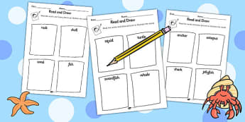 Under the Sea Read and Draw Worksheet - reading, drawing, sea