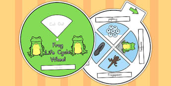 Frog Life Cycle Spin Wheel - life cycles, visual aids, lifecycles