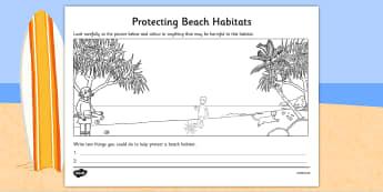 Protecting Beach Habitats Colouring Activity - australia, Science, Year 1, Beach, Habitats, Australian Curriculum, Living, Living Adventure, Environment, Living Things, Animals, Plants, Worksheet