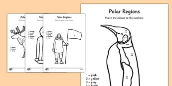 Polar Regions Colour by Number Counting Activity Sheet - polar regions, colour by number, colour, number, counting, activity, count, worksheet