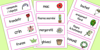 La florărie - Cartonașe cu imagini și cuvinte - la florărie, joc de rol, imagini, cuvinte, cartonașe, meserii, dezvoltare personală, materiale, materiale didactice, română, romana, material, material didactic