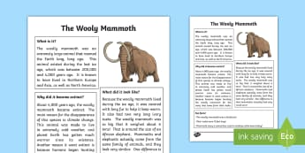 All About The Woolly Mammoth Fact File - Great Canadian Animals, mammoth, ice age, the woolly mammoth, woolly mammoth, elephant, extinct, mam