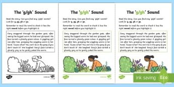 NI Linguistic Phonics Stage 5 and 6 Phase 3b, 'g, gh' Sound Activity Sheet - Linguistic Phonics, Phase 3b, Northern Ireland, 'g', 'gh', sound, sound search, text, Workshee