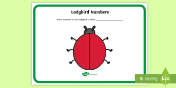 Ladybird Numbers Activity Mat - NI KS1 Numeracy, addition, practical maths, play.
