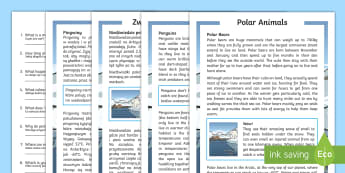 Winter Animals Differentiated Reading Comprehension Activity English/Polish - Winter 2016/17, weather, cold, freezing, fur, insulation, polar bear, penguin, blizzard, Arctic, Ant