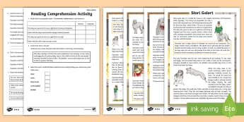 Stori Gelert  A  Welsh Legend Differentiated Reading Comprehension Activity - Stori Gelert, Gelert, chwedl, Cymru, Tywysog, Llywelyn, ci, baban, castell, Cymru, Eryri, Gogledd Cy