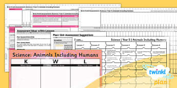 PlanIt - Science Year 5 - Animals Including Humans Unit Assessment Pack - planit, assessment, pack