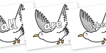 Tricky Words on Seagulls - Tricky words, DfES Letters and Sounds, Letters and sounds, display, words