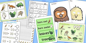 Childminder Owl Babies Resource Pack - resources, pack, child