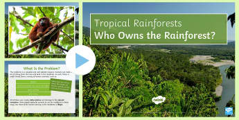 Who Owns the Rainforest? PowerPoint - rainforests, extreme, weather, ks3, geography, debate, manu, deforestation, ecosystem