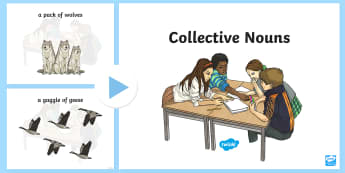 Collective Nouns PowerPoint - Collective Nouns, groups, nouns, grammar,Irish