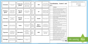 Edexcel Animal Co ordination, Control and Homeostasis Word Loops - Word Loops, nerve cells, FSH, LH, pituitary gland, endocrine gland, insulin, diabetes