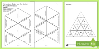 Homeostasis, Control and Coordination Tarsia Triangular Dominoes - Tarsia, homeostasis, control coordination, hormones, nervous system, endocrine system, thermoregulat