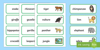 Word Cards to Support Teaching on Rumble in the Jungle - Story, book, resources, Giles Andreae, David Wojtowycz, word card, flashcard, flashcards, teaching resources, book resources, jungle creatures, jungle, book resource