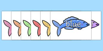 Colours on Coloured Fish - colours, coloured fish, coloured fish