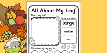 Leaf Worksheet - leaf worksheet, leaf, leaves, collecting leaves, description worksheet, writing prompt, about my leaf, activities, games, nature
